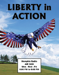 Liberty in Action