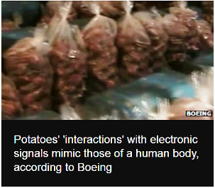 Boeing uses potatoes instead of people to test wi-fi'