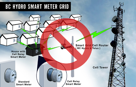 Re: Immediate Suspension of B.C. Smart Meter Programs, Damage is Measurable By the Second