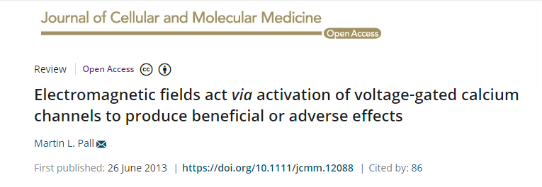 Electromagnetic fields act via activation of voltage-gated calcium channels to produce beneficial or adverse effects